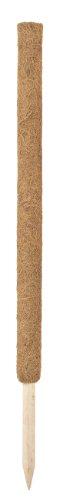 Connex Kokos-Pflanzstäbe verlängerbar, 80 cm