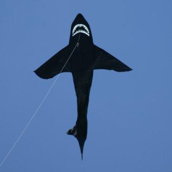 Hai Drachen - Sky Shark - Einleiner-Drachen für Kinder ab 6 Jahren - Abmessung: 143x225cm - inkl. 80m Drachenschnur mit Handgriff