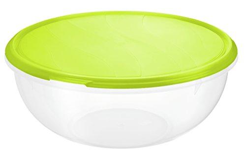 Rotho 1704505503 Teig- und Frischhalteschüssel Rondo aus Kunststoff (PP), Inhalt 6 L, circa' 32 x 32 x 14cm, BPA-frei, transparent/Grün Salatschüssel, Kunststoff, 1 Einheiten