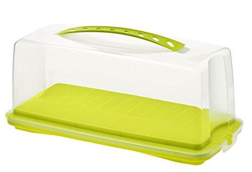 Rotho Fresh Kuchenbehälter Kunststoff
