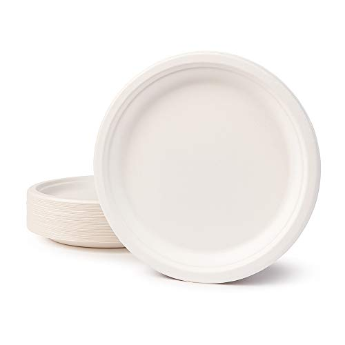 BIOZOYG Umweltverträgliches Bagasse Geschirr Einweg I 50 Stück Zuckerrohr Teller 26 cm weiß rund Gebleicht I Einwegteller Partyteller Einmalgeschirr Bio Einweggeschirr Speiseteller