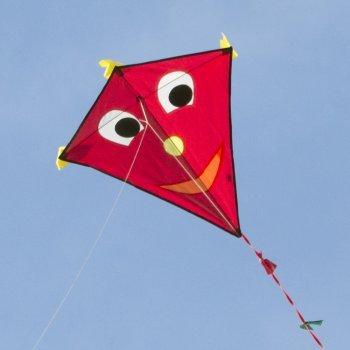 Kinderdrachen - Happy Eddy RED - Einleiner für Kinder ab 3 Jahren - Abmessung: 67x70cm - inkl. 80m Drachenschnur und Schleifenschwanz