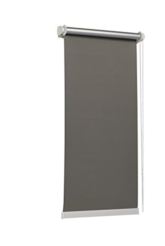 TEXMAXX - Reflect - Verdunklungsrollo Thermorollo Sichtschutz - 95 x 160 cm (Stoffbreite 91 cm) - Rollos für Fenster ohne Bohren inkl. Zubehör - in Grau - Silber