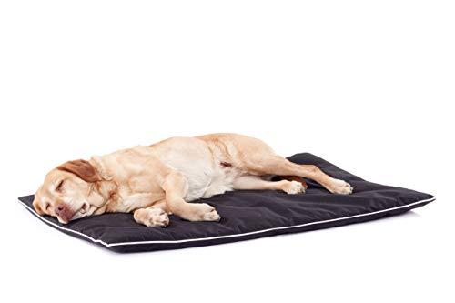 Woofery Hundematte Hundekissen Hundebett Merlin aus Cordura mit Reißverschluss wasserfest L - 90 x 60 cm Schwarz