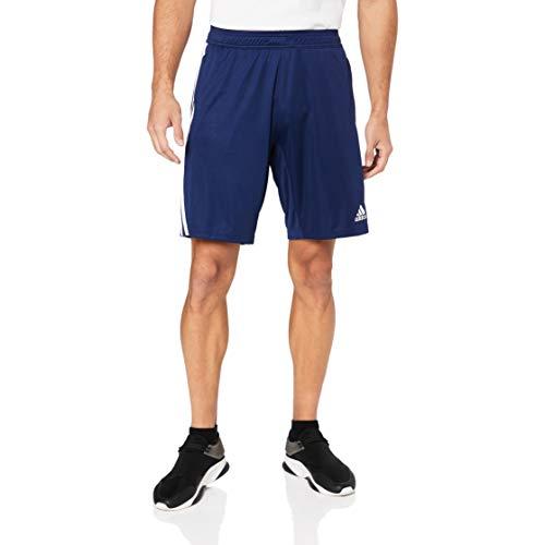 adidas Herren TIRO19 TR SHO Sport Shorts, Dark Blue/White, L