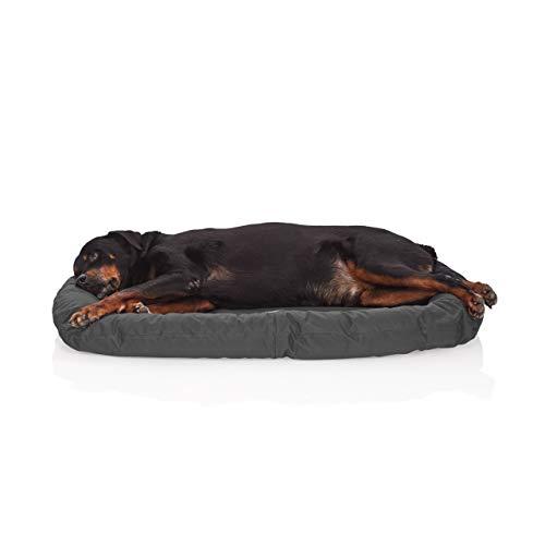 Pets&Partner Indoor und Outdoor Matte für kleine bis große Hunde, Grau L