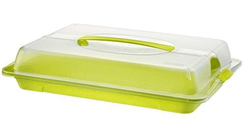Rotho Partybutler 'John' - große Lebensmittel Transportbox aus Kunststoff (PP) mit Deckel und Tragegriff, spülmaschinenfest, BPA- und schadstofffrei - transparent/grün, ca. 43.5x29.5x9 cm (LxBxH)