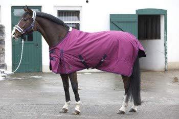 PFIFF 101671 Pferde Ganzjahres Decke, Weidedecke Pferdedecke Regendecke, Bordeaux / Rot 135 cm