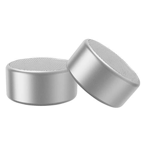 Bluetooth Lautsprecher tragbar True Wireless Stereo(TWS) Mini mobiler Bluetooth Speaker mit 7Stunden Spielzeit,10 Meter Bluetooth Reichweite mit Bass (2 Pack, Silberweiß)
