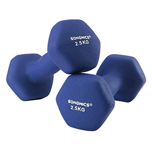 SONGMICS 2er-Set Hanteln Kurzhantel Gymnastikhantel Vinyl in verschiedenen Gewichts und Farbvarianten für Gymnastik Fitnesstraining