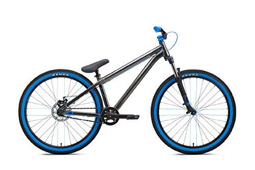 NS Bikes Zircus Dirtbike