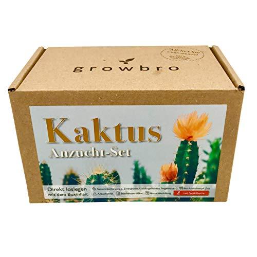 growbro Kaktus Kakteen Mischung | Anzuchtset inkl. Sprühflasche | Geburtstagsgeschenk, Sukkulenten, Geschenke für Frauen & Männer, Gastgeschenk, Zimmerpflanzen, Cactus