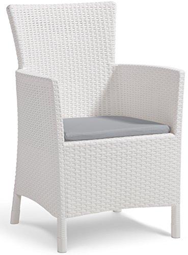 Allibert Dining Sessel Iowa, Stuhl Kunststoff, bequeme und robuste Kunststoffstühle Garten, 62 x 60 x 89 cm, weiß