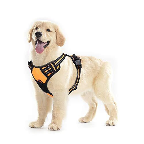 rabbitgoo No-Pull Hundegeschirr für mittelgroße Hunde Welpengeschirr Einstellbar Weich Geschirr Sicher Kontrolle Brustgeschirr Gepolstert Orange M