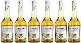 Choya Silver japanischer Pflauemenwein (Weinhaltiges Getränk, Ume Frucht, fruchtig, süßlich, 10% vol.) 6er Pack (6 x 0,5 l)