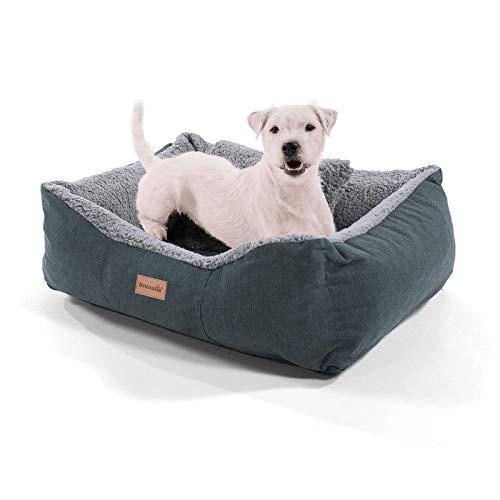 brunolie Emma Kleiner Hundekorb in Grau, waschbar, hygienisch und rutschfest, luftiges Hundebett mit Kissen zum Kuscheln, Größe S (59 x 67 x 20 cm)
