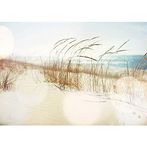 Fototapete Strand - ALLE STRANDMOTIVE auf einen Blick ! Vlies PREMIUM PLUS HIQ - OEKO-TEX Standard 100-350x245 cm - SUMMER BREEZE - Meer Nordsee Ostsee Wasser Blau Himmel Sonne Sommer - no. 148