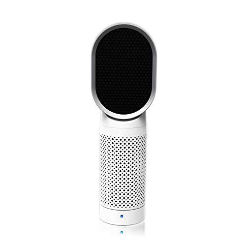 QUEENTY Luftreiniger Air Purifier mit HEPA-Kombifilter & Aktivkohlefilter, Desktop Luftreiniger Ionisator, Perfekt für Staub und Haustier-Allergene, Allergiker, Raucher, Asthma, Raucherzimmer, Wohnung