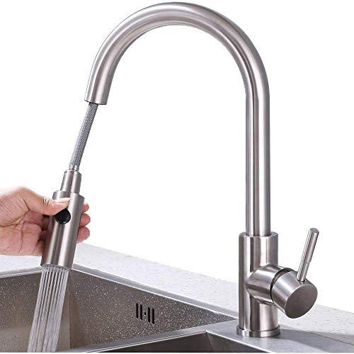 HOMELODY 2-Strahlen Wasserhahn Küche ausziehbar Armatur Edelstahl Küchenarmatur mit Brause Mischbatterie Spültischarmatur Matt