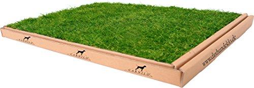 Carnilo - Hundeklo aus echtem Rasen, Welpentoilette, Trainingsunterlage, Hundetoilette, stubenrein