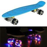 55cm/22 Mini Cruiser Board Retro Skateboard Komplettboard mit LED Leuchtrollen für Jugendliche Kinder und Erwachsene