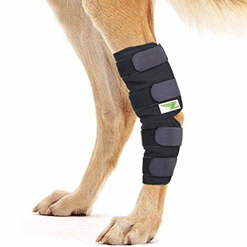 RockPet Gelenkbandage für das Hinterbein ihres Hundes (L)