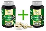 Vegan'MEGA-SPAR-POT' Astragalus Wurzel 2x360 pflanzliche Kapseln (Astragalus membranaceus, Tragant) je 500 mg. rein natürliches Pulver, ohne Zusatzstoffe.