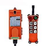 MXBAOHENG Industrielle Funkfernbedienung Hebekran Fernsteuerung F21-E1 AC / DC Drahtlose Steuerung für Kran 1 Sender und 1 Empfänger (220 V)