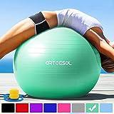 arteesol Gymnastikball 45cm / 55cm / 65cm / 75 cm inkl. Pumpe Anti-Burst Sitzball für Yoga Pilates Fitness Physiotherapie (5 Farben) (Türkis, 55cm)