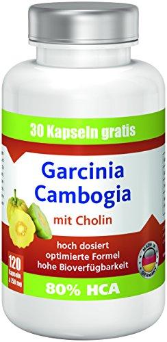 Garcinia Cambogia mit 80%HCA, 750mg pro Kapsel ANGEBOT!! bestes Preis-Leistungsverhältnis, extrem hohe Bioverfügbarkeit, hoch dosiert, 120 Kps, Fatburner, Appetit Control, Diät, abnehmen