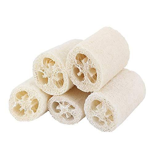 Miji 5 Stück Luffa Bad Dusche Schwamm Natürliche Luffa Küche Scrubber Bürste Bad Dusche Schwamm für täglichen Gebrauch
