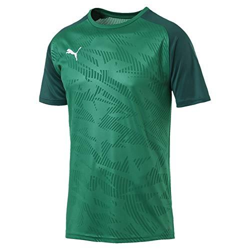 PUMA Herren Cup Training Jersey Core Trainingsshirt, Pepper Green-Alpine Green, XL