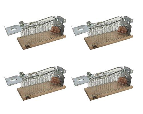 Mausefalle Tierfreundliche Lebendfalle für Mäuse 4 Stück Set