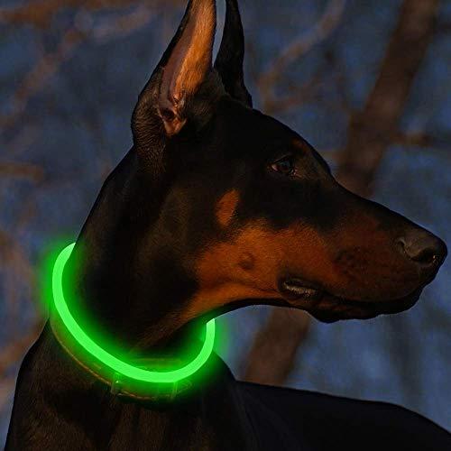 LED Leuchthalsband Hunde Halsband USB wiederaufladbar - Längenverstellbarer Haustier Sicherheit Kragen für Hunde und Katzen - 3 Modus ( Grün)