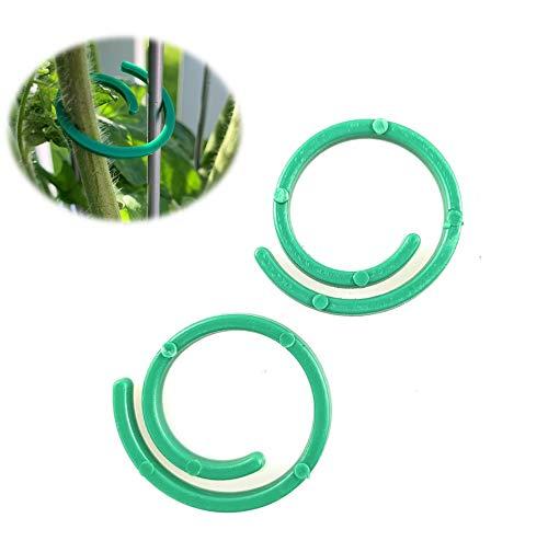 versandfuxx24 75 Pflanzenhalter Pflanzenbinder Pflanzenringe