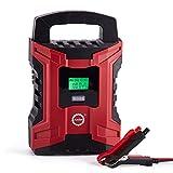 AKM Batterie Ladegerät 6V/12V 10A Winterlademodus,Aktualisierte Version LCD-Batteriespannungs- und Ladefortschrittsanzeige für KFZ PKW Auto Motorrad