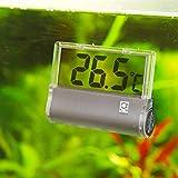 JBL 6122000 Aquarium Thermometer DigiScan, grau