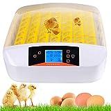 Bunao 56 Eier Inkubator Vollautomatische Brutmaschine Brutkasten Brutapparat Flächenbrüter Automatische Geflügel Brüter Brutmaschine Inkubation (56)