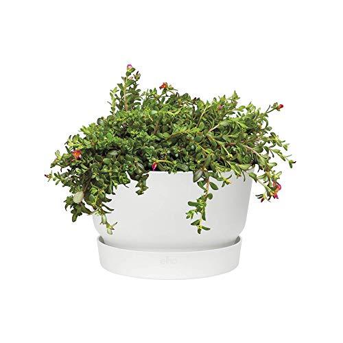 Elho Greenville Blumentopf 33 - Blumentopf - Weiss - Draußen  - Ø 33 x H 19.5 cm