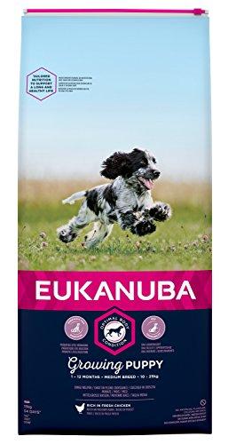 Eukanuba Puppy Welpenfutter für mittelgroße Rassen – Ausgewogenes Trockenfutter mit verbesserter, Rezeptur für Welpen im Alter von 1-12 Monaten in der Geschmacksrichtung Huhn – 1 x 15g Beutel