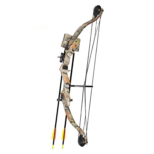 SET: Compoundbogen Hawk 31 ' (79 cm) Autumn Camo 20 lbs Cable Wire RH - Kinderbogen / Jugendbogen