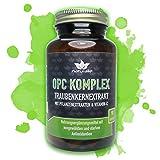 OPC KOMPLEX - einzigartige Formel mit Traubenkernextrakt, Vitamin-C plus 3 starke Antioxidantien - 90 vegane Kapseln im GLAS ohne Magnesiumstearat und BPA-Weichmacher