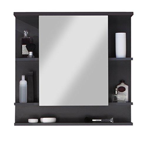 Trendteam Tetis Badezimmer Spiegelschrank, 72 x 76 x 20 cm, in Graphit mit fünf Ablagefächern