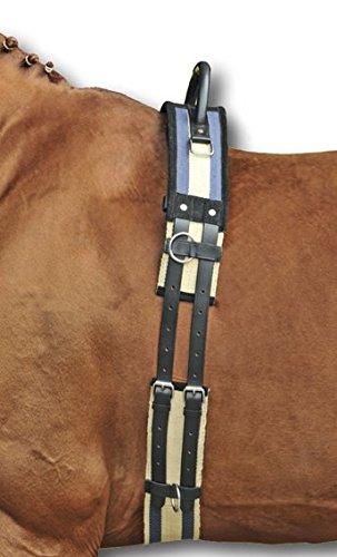 HKM Longiergurt mit Haltegriff, dunkelblau/beige, Pony