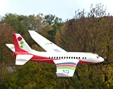 WIM-SHOP WURFGLEITER XL Flugzeug Boeing mit SUPER FLUGEIGENSCHAFTEN in TOP QUALITÄT