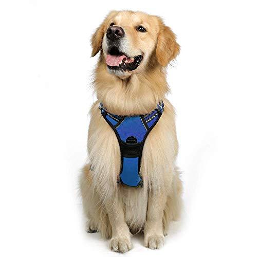rabbitgoo No-Pull Hundegeschirr atmungsaktiv Brustgeschirr Geschirr für Hunde Welpengeschirr Reflexstreifen Sichere Führung Einstellbar Weich Blau L