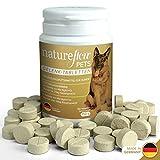 Gelenktabletten für Hunde - mit Grünlippmuschel, MSM und Teufelskralle - Hohe Akzeptanz beim Hund da keine Kapseln - 100 Tabletten für bis zu 6 Monate - In Deutschland hergestelltes Ergänzungsfutter
