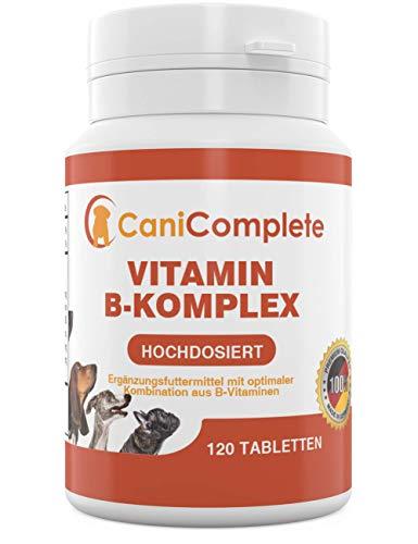 CaniComplete Vitamin B-Komplex für Hunde, Katzen: B1, B2, B3, B5, B6, B9, B12, K3, Calcium, Folsäure. Unterstützt wichtige Nervenfunktionen.120 Stück (4 Monatspackung)