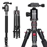 HEOYSN Stativ Kamera, Einbeinsativ-Funktion163cm, Fotostativ Kamerastativ Aluminium mit 360°Kugelkopf und Tragetasche, Kompatibel mit Canon/Nikon/Sony und Allen Kameras