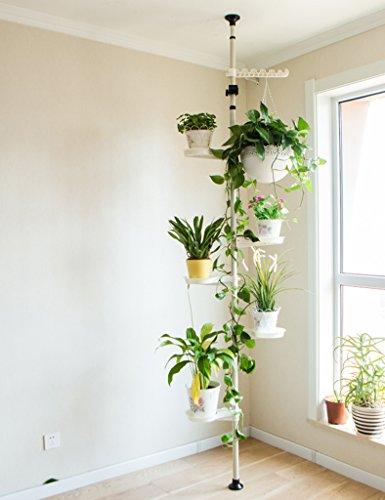 ZCJB Pflanzenregale Blumen-Regal-Eisen-Multifunktionsbalkon-Wohnzimmer-Innenaufbau Chlorophytum-Standplatz-europäischer Art